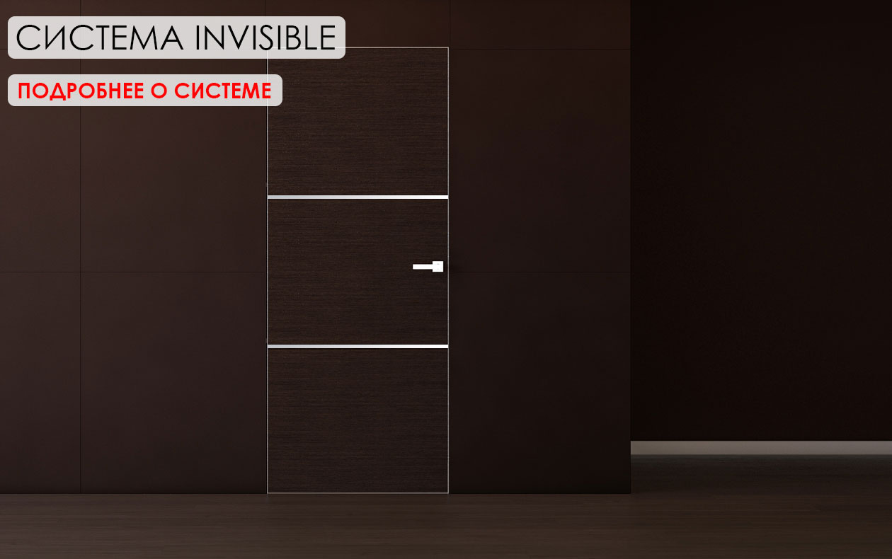 systema invisible